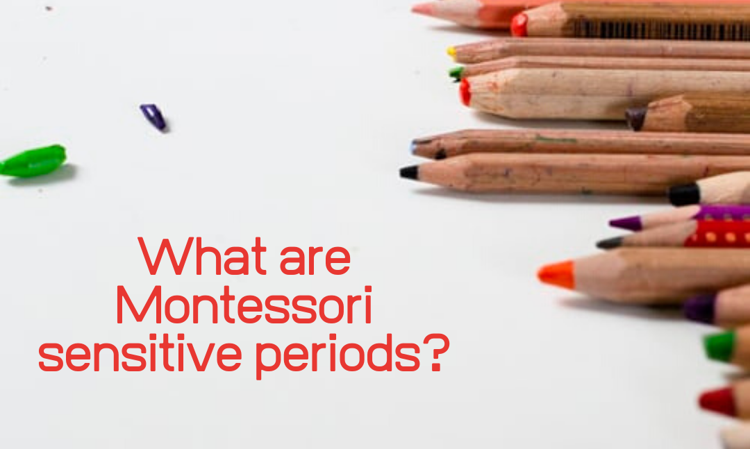 What are Montessori sensitive periods?